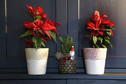 Geschenkideen Weihnachten Essen.Rubycorn Online Shop Weihnachten Geschenkideen Fair Trade